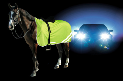 Reflective Horse Safety Driving Rug