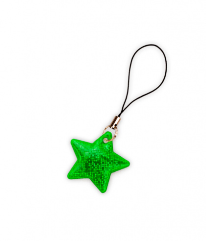 Reflective Zipper Puller (green star)